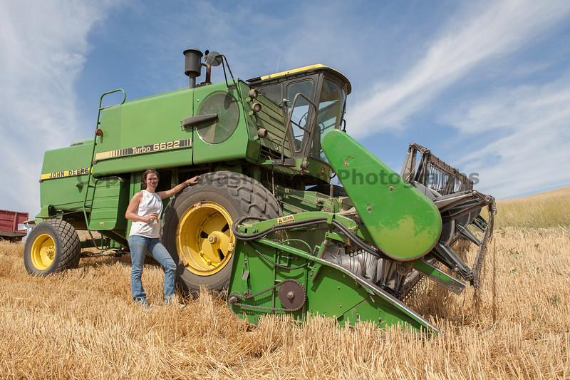 Wheat Harvest 104