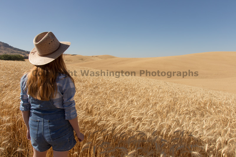 Wheat Field Girl 100