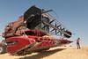 Wheat Harvest 73