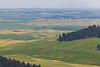 Wheat Fields from Skyline Drive 17