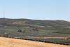 Vineyard - Snipes Mountain 14