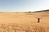 Wheat Farm Girl 286