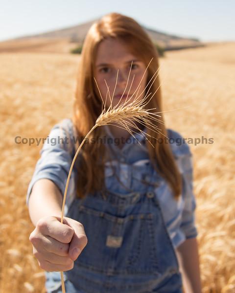 Wheat Field Girl 128
