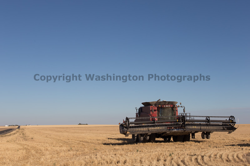 Wheat Harvest 162