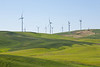 Wind Farm Spring 11