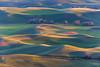 Steptoe Butte Spring 190
