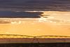 Sprinkler Sunset 12
