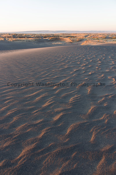 Moses Lake Sand Dunes 15