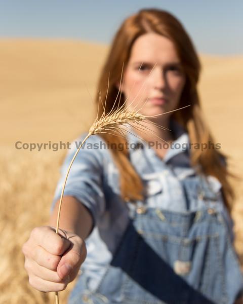 Wheat Field Girl 131