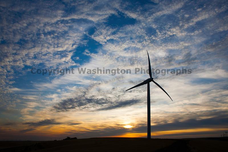 Wind Farm 49