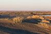 Moses Lake Sand Dunes 18