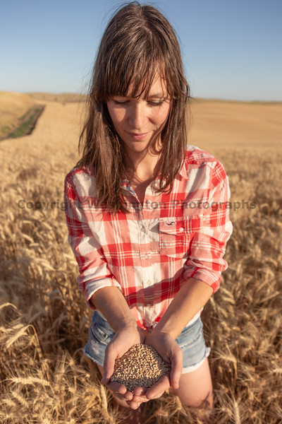 Wheat Farm Girl 292