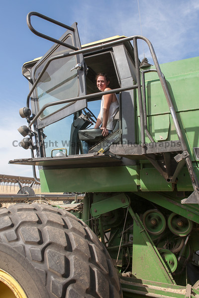Wheat Harvest 124