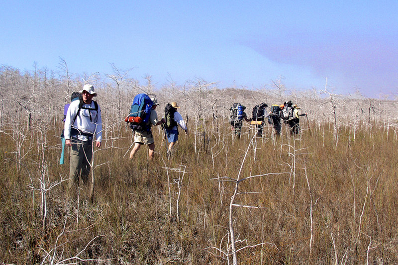 Robert Kirby checks on stragglers as the group heads into the third day of the Big Cypress hike.  <br /> PHOTO CREDIT: Donn Brown / Florida Trail Association