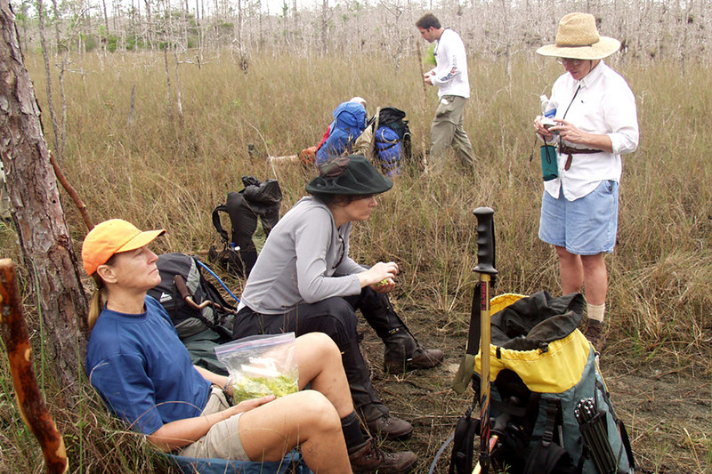 Participants of the Big Cypress hike relax at 7-mile camp.<br /> L to R, Deborah Dalrymple, Juliet Schwarz, Robert Kirby, and Mara Snyder.  <br /> PHOTO CREDIT: Donn Brown / Florida Trail Association