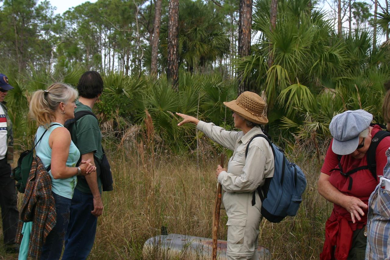 Big Cypress North<br /> PHOTO CREDIT: Claudine Laabs / Florida Trail Association