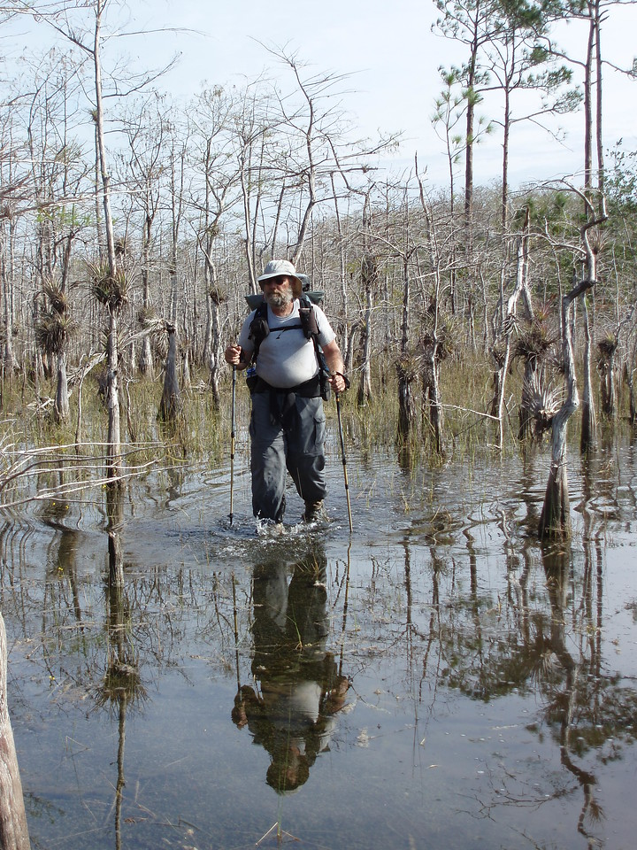 LWOP wading in Big Cypress<br /> PHOTO CREDIT: Phyllis Malinski / Florida Trail Association