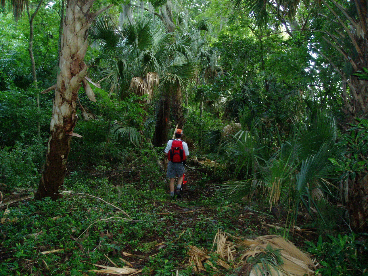 Rafael Sanchez Trail, Okeechobee Ridge Park<br /> Photo by Deb Blick