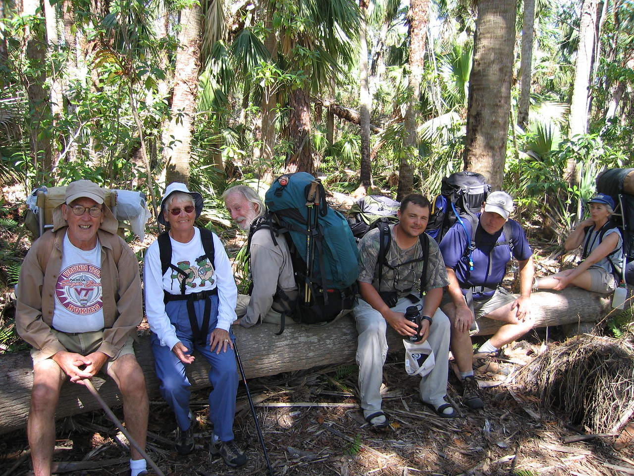 Bea and her chicks<br /> photo credit: Raphael Clemente / Florida Trail Association