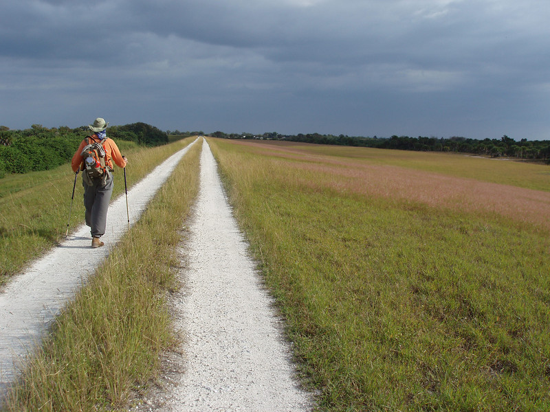 Indian Prairie campsite<br /> PHOTO CREDIT: Robert Coveney / Florida Trail Association