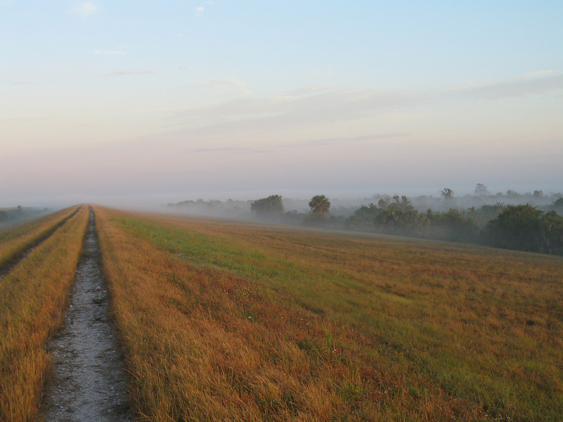 Hiking the trail in a fog,  Moore Haven<br /> PHOTO CREDIT: Sandra Friend / Florida Trail Association