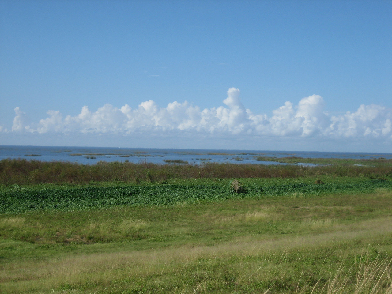 Lake Okeechobee from the Florida Trail<br /> location: Chauncey Bay<br /> PHOTO CREDIT: Sandra Friend / Florida Trail Association