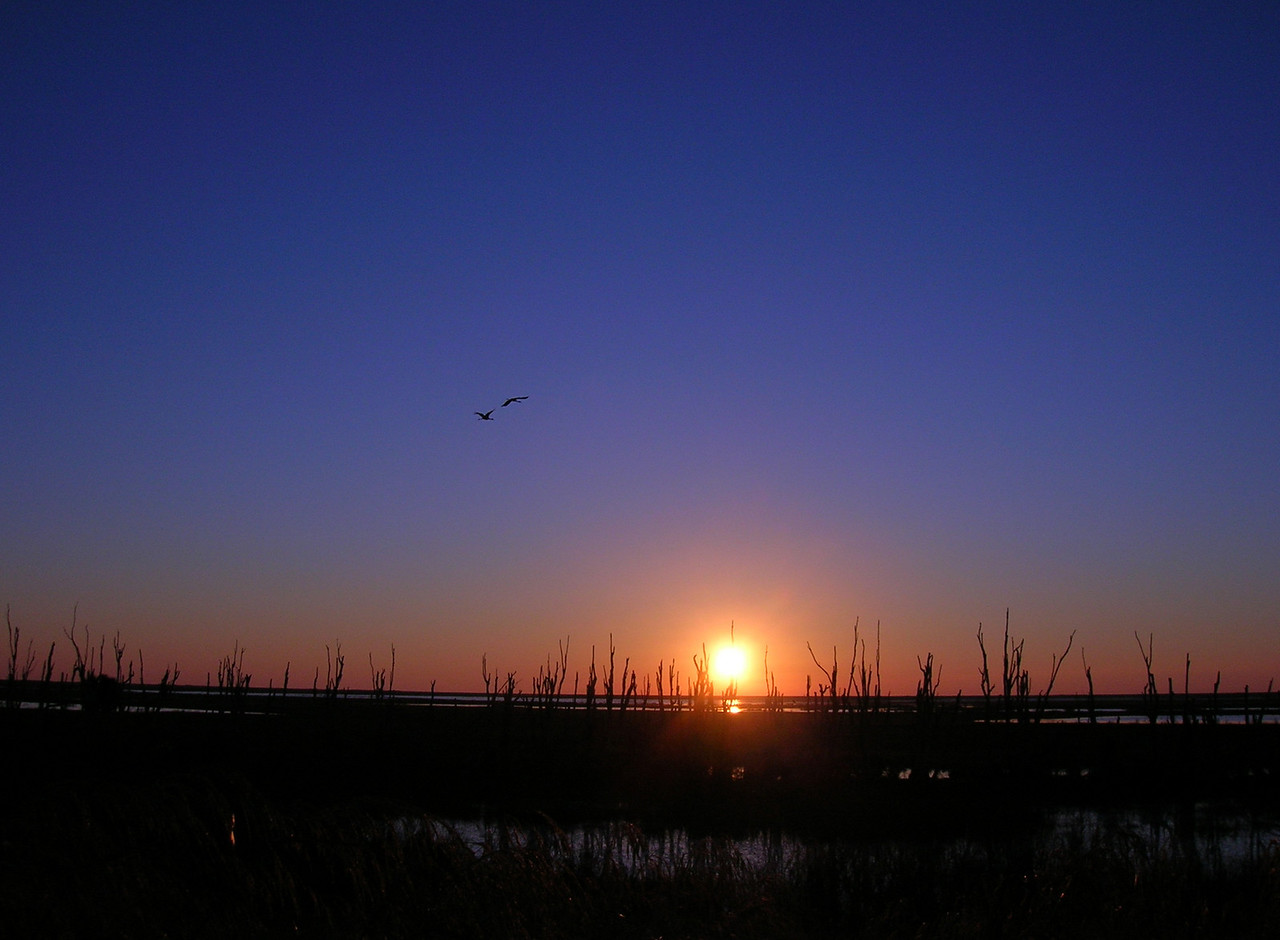 Sunrise over the Okeechobee marshes<br /> location: Big Bear Beach<br /> PHOTO CREDIT: Rosalind Suit / Florida Trail Association