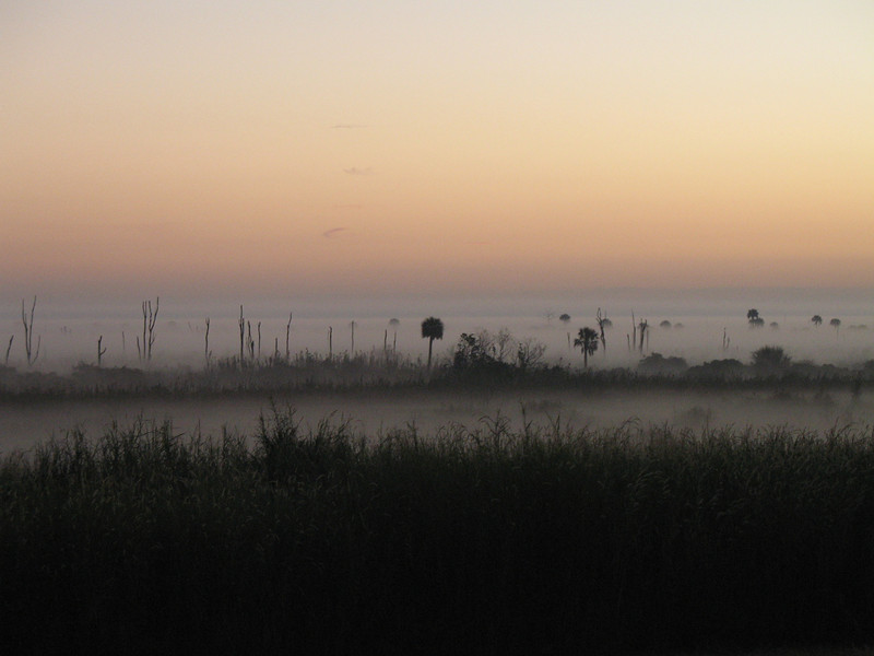Misty morning at Moore Haven<br /> PHOTO CREDIT: Sandra Friend / Florida Trail Association
