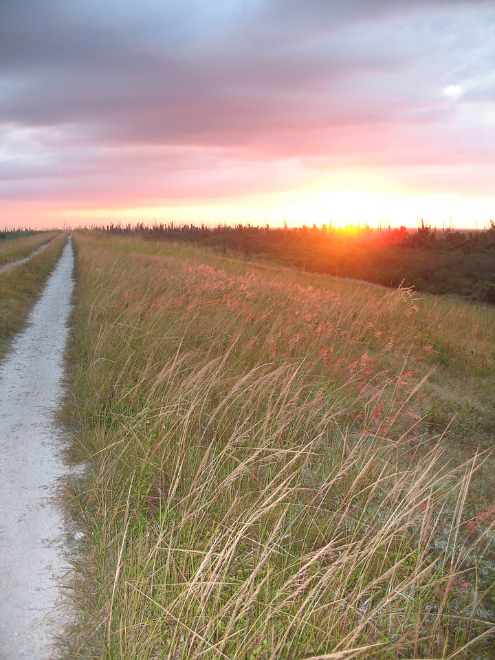Sunrise at Indian Prairie<br /> PHOTO CREDIT: Sandra Friend / Florida Trail Association