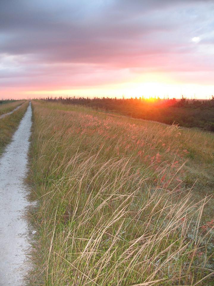 Sunrise at Indian Prairie<br /> PHOTO CREDIT: Sandra Friend / Florida Trail Association