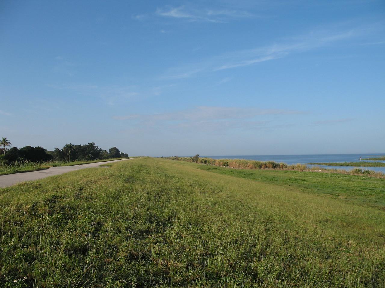 A field of green near Pahokee<br /> PHOTO CREDIT: Sandra Friend / Florida Trail Association