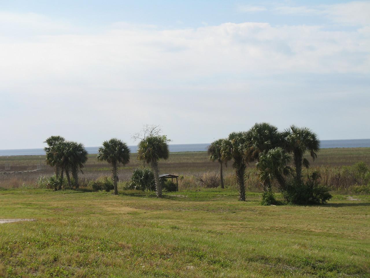 Campsite at Nubbin Slough<br /> PHOTO CREDIT: Sandra Friend / Florida Trail Association