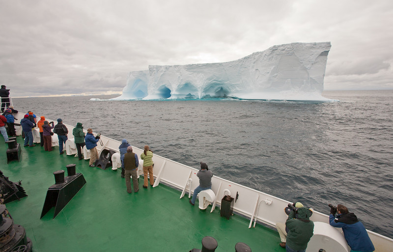 Huge icebergs can float up from the Antarctic Peninsula to along the south coast of South Georgia Island. By Ted Cheeseman in Nov 2007.