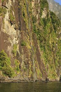 South Island 2 071.JPG