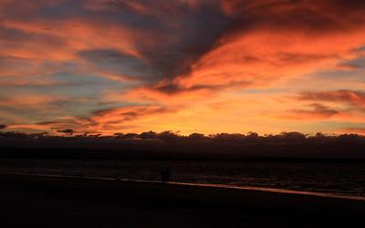 South Island 4 023.JPG