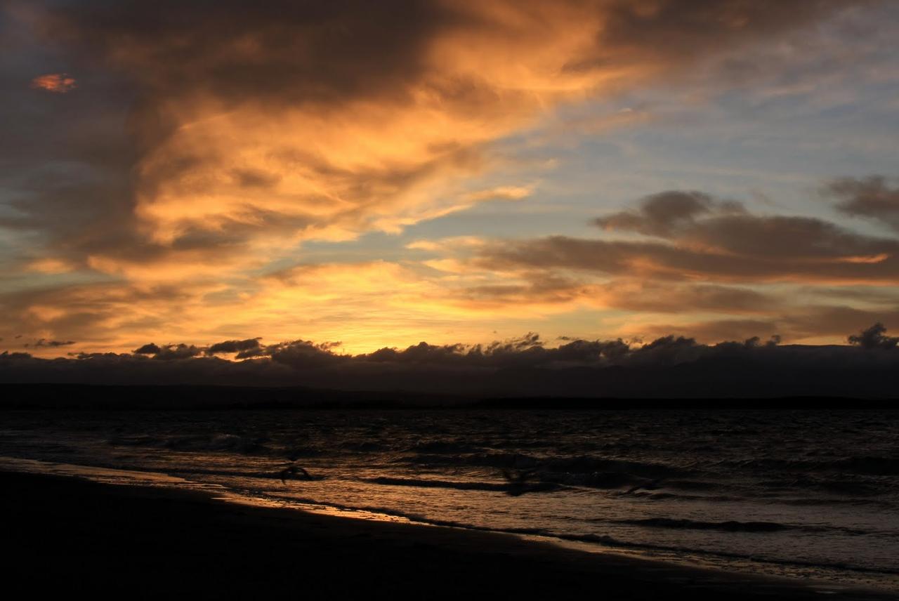 South Island 4 017.JPG