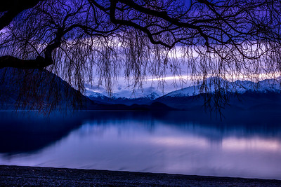 Lake Wanaka with tree