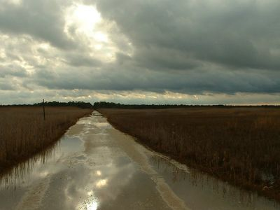 Local Marshes