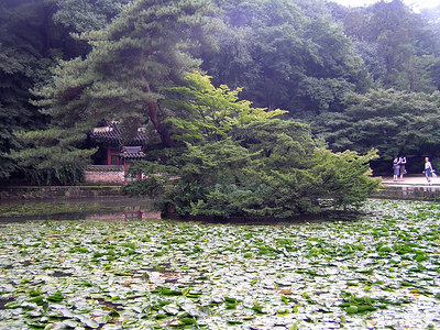 Changdeokgung Palace - Seoul