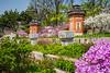 Seasonal spring blossoms at the Gyeongbokgung Royal Palace in Seoul, South Korea, Asia.