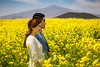 A young Korean couple in a blooming yellow canola field on Jeju Island, South Korea, Asia.
