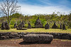 The Jeju Stone Park in Jocheon-eup, Jeju-si, Jeju Island, South Korea, Asia.