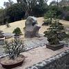 Остров Чеджу. Думающий парк (Spirited Garden). Деревья бонсай.