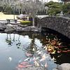 Остров Чеджу. Думающий парк (Spirited Garden)