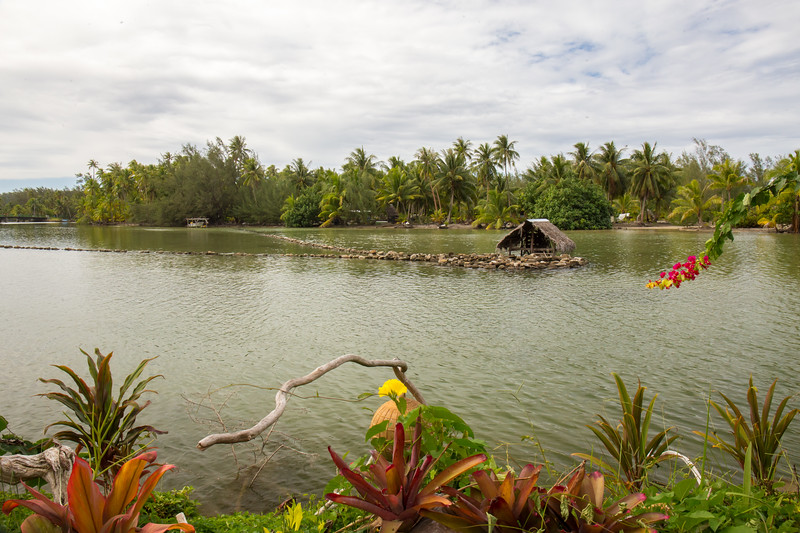 Fish trap on the island of Huahine