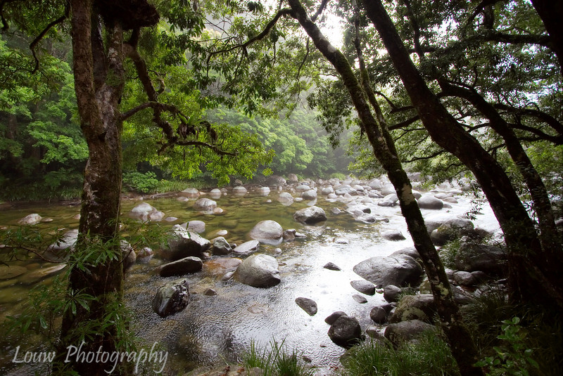 Mossman Gorge, Daintree National Park, North Queensland