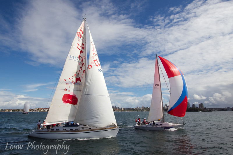 Sailboats, Sydney Harbour