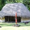 Grass hut Arahurahu Marae
