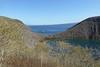 Darwin Crater at Tagus Cove - 2