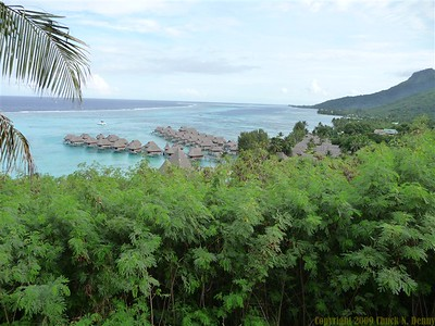 Sofitel Resort, Moorea